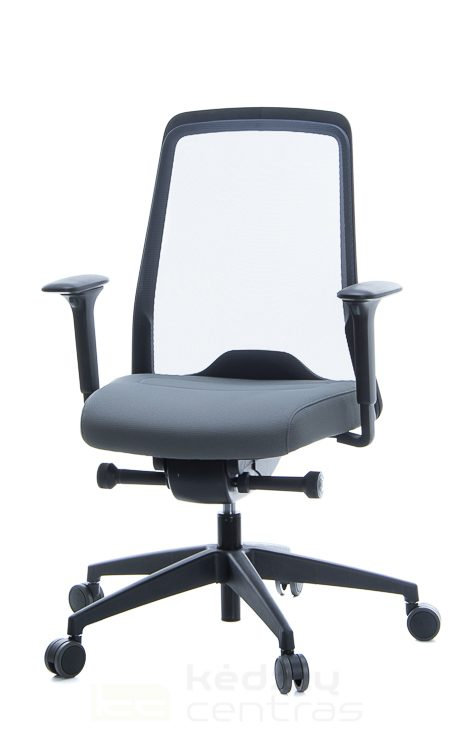 biuro kede, biuro kede, biuro kedes, biuro kėdė, biuro kedės, biuro kedė, Ergonomiskos kedes, ergonomines kedes, Interstuhl biuro kede, Biuro kedes internetu, Biuro kedes internetu