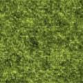 Žalia (80% Vilna, 20% poliesteris)