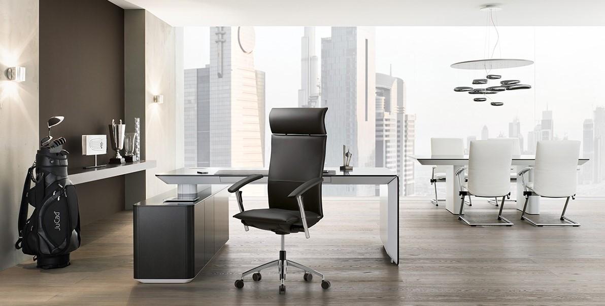 Ergonominė vadovo biuro kėdė