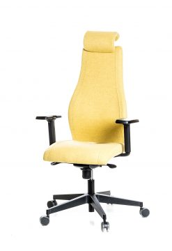 Ergonomiška biuro kėdė VIDEN || Kėdžių centras || Office chairs